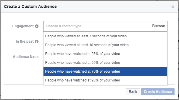 Video Engagement Facebook Audience